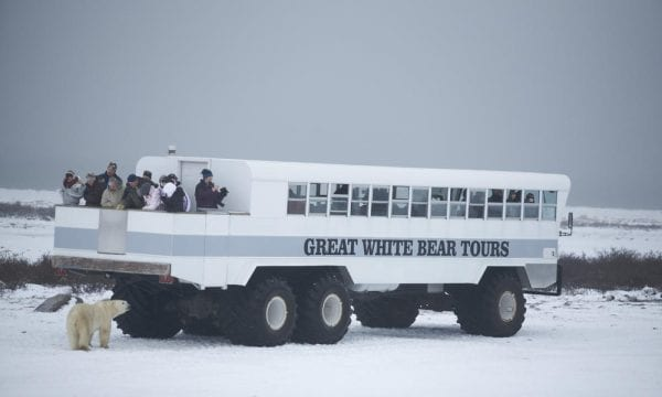 Churchill, Manitoba best tourist attractions